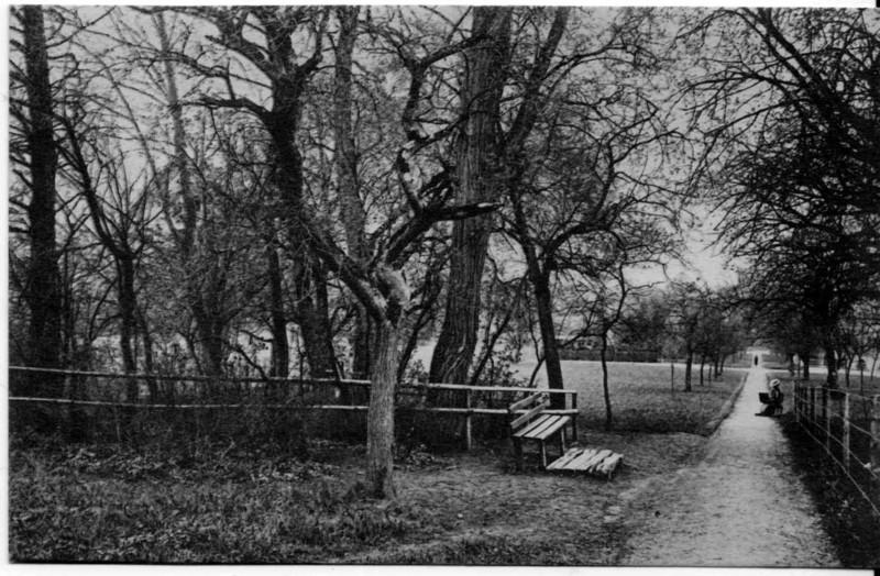 Frauenfeld Algisser um 1905