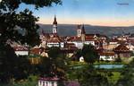 Frauenfeld Altstadt vom Klösterli Weiher