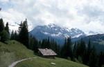 Alphütte Adelboden