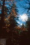 Herbst 03