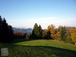 Herbst bei Allenwinden 01