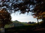 Herbst bei Allenwinden 02