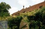 Ittinger Rosengarten