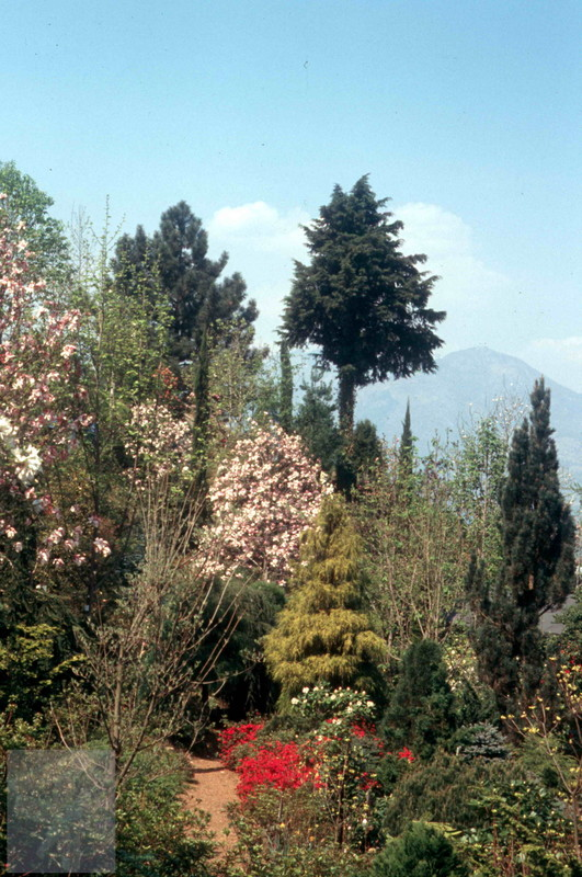 Tessin Parco 01