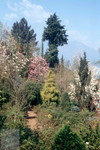 Tessin Parco 02