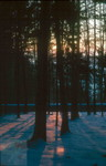 Winterabend