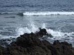 Lavastrand, Tenerife, 13.03.08