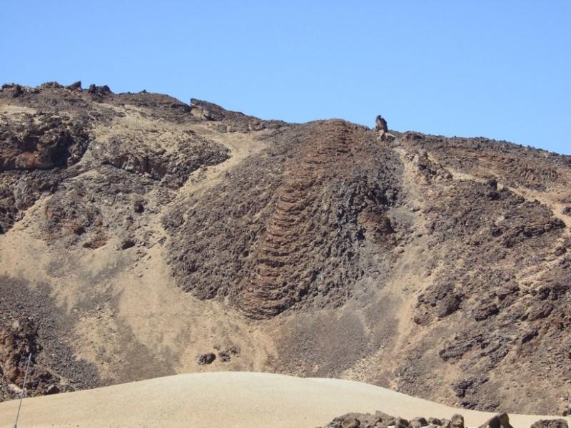 Stricklava, Tenerife, 11.03.08